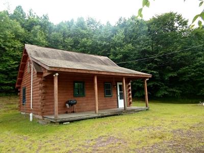 Galeton Single Family Home For Sale: 20 Bull Run Lane
