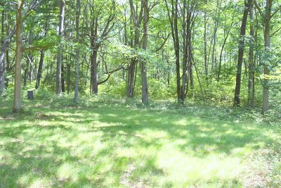 Gaines Residential Lots & Land For Sale: 188 Laurel Crest Road