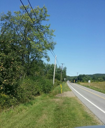 Potter County Residential Lots & Land For Sale: N Brookland Rd.