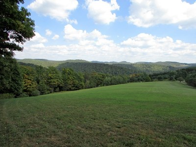 Potter County Residential Lots & Land For Sale: Short Run Rd