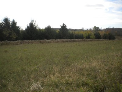 Potter County, McKean County Residential Lots & Land For Sale: Pigeon Hill Road