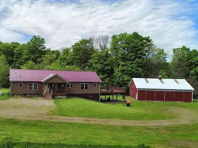 Potter County Single Family Home For Sale: 6697 Route 49