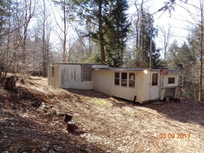 Potter County, McKean County Single Family Home For Sale: 24 Hemlock Lane