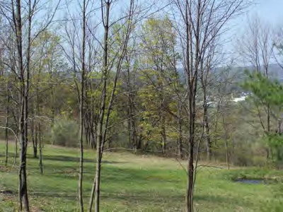 Wellsboro Residential Lots & Land For Sale: Lot 9 Hunter's Trail Road