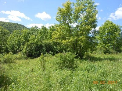 Westfield Residential Lots & Land For Sale: Stone Quarry Road