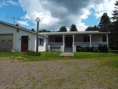 Potter County Single Family Home For Sale: 586 Bush Hill Road