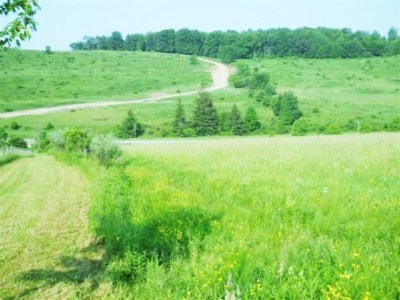 Middlebury Center Residential Lots & Land For Sale: Deerman