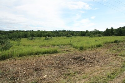 Middlebury Center Residential Lots & Land For Sale: Lot 4 Thornbottom Rd