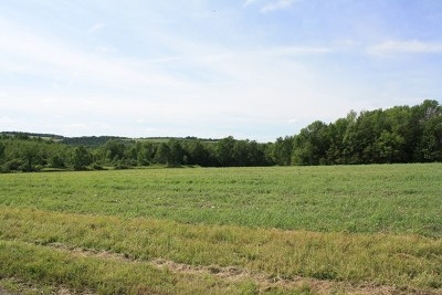 Middlebury Center Residential Lots & Land For Sale: Lot 2 Thornbottom Rd