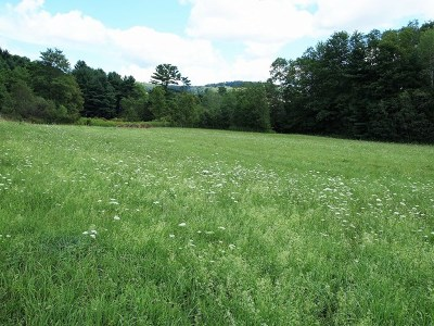 Potter County Residential Lots & Land For Sale: Lot#6 Wildcat Rd