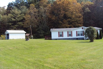 Tioga Single Family Home For Sale: 1165 Route 328