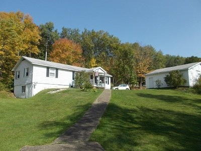 Port Allegany Single Family Home For Sale: 20882 Route 6
