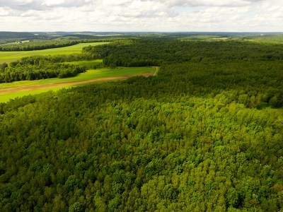 Potter County Residential Lots & Land For Sale: 804 Windfall Road