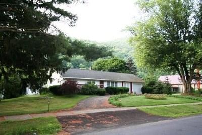 Galeton Single Family Home For Sale: 103 Germania Street
