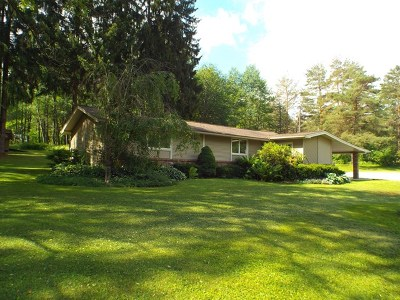 Port Allegany Single Family Home For Sale: 20982 Route 6