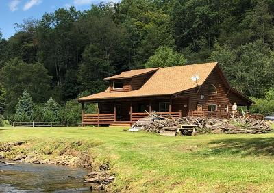 Potter County Single Family Home For Sale: 127 Lyman Run Road
