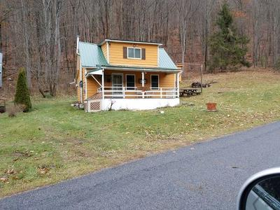 Galeton Single Family Home For Sale: 132 West Branch Road
