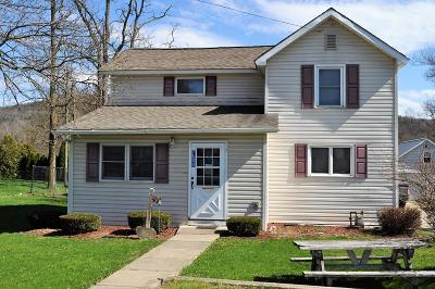 Osceola Single Family Home For Sale: 7604 Route 49