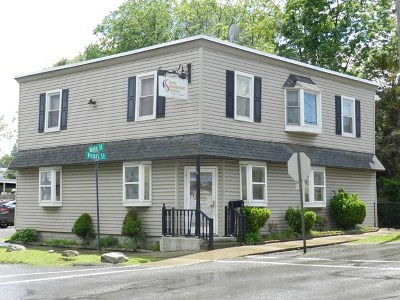 Wellsboro Commercial For Sale: 11 Pearl Street