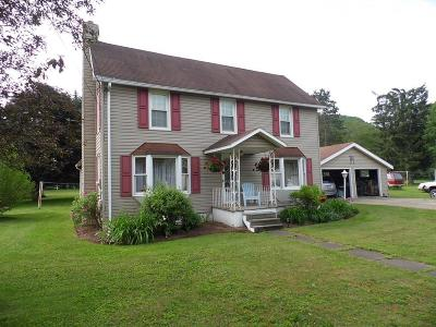 Blossburg Single Family Home For Sale: 123 South Williamson Rd