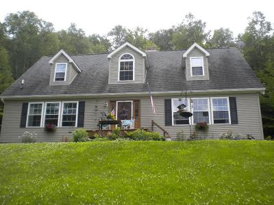 Middlebury Center Single Family Home For Sale: 3539 Norris Brook Road