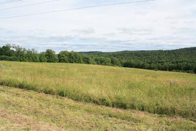 Middlebury Center Residential Lots & Land For Sale: Lot 3&4 Thornbottom Road