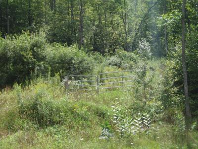 Millerton Residential Lots & Land For Sale: Bailey Creek Road