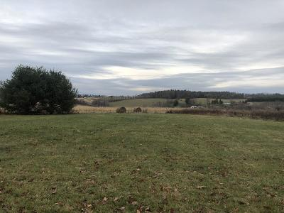 Millerton Residential Lots & Land For Sale: 291 Picnic Grove Rd.