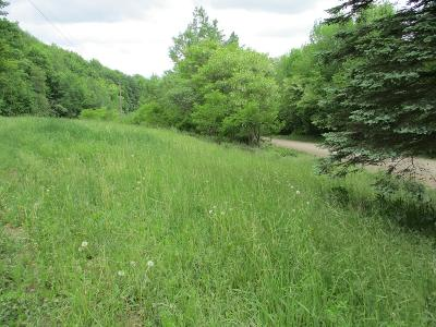 Covington Residential Lots & Land For Sale: 2435 Welch Mountain Rd