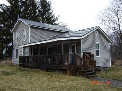 Coudersport, Galeton, Gaines, Wellsboro, Mansfield, Mainesburg, Troy, Sayre, Lawrenceville, Elkland, Knoxville, Westfield, Genesee, Liberty, Williamsport Single Family Home For Sale: 10484 Route 249
