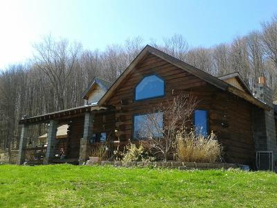 Port Allegany Single Family Home For Sale: 1667 Two Mile Road