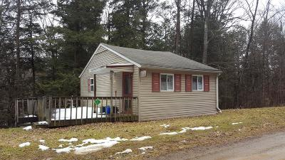 Potter County, McKean County Single Family Home For Sale: 2103 Dug Road
