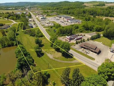Mansfield Commercial For Sale: 1289 South Main Street
