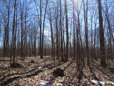 Tioga Residential Lots & Land For Sale: Route 328
