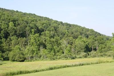 Troy Residential Lots & Land For Sale: 500 Austinville Road