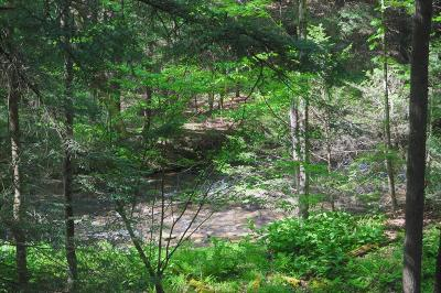 Lawrenceville Residential Lots & Land For Sale: Buckwheat Hollow Road