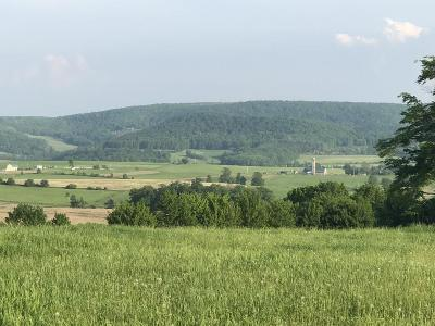 Millerton Residential Lots & Land For Sale: Lot 4 Burrous Hollow & Lyman Stone Road