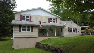 Coudersport Single Family Home For Sale: 2666 Dividing Ridge Road