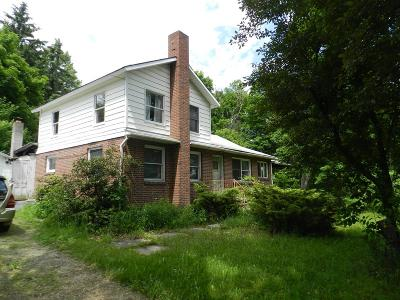 Mansfield Single Family Home For Sale: 16655 Route 6