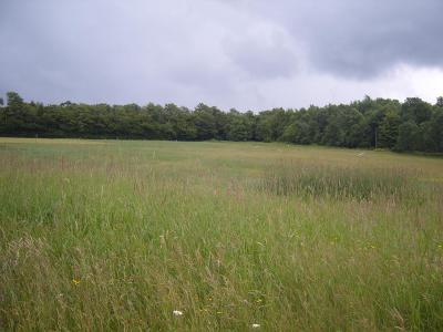 Potter County Residential Lots & Land For Sale: 23 Skytop Rd