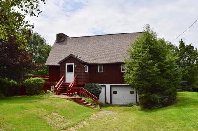 Wellsboro Single Family Home For Sale: 142 Wats Lane