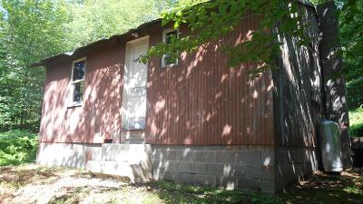 Potter County Single Family Home For Sale: 951 Germania Road
