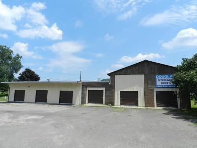 Commercial For Sale: 19564 Route 287