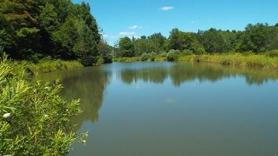 Roulette Residential Lots & Land For Sale: 1439 Fishing Creek Road