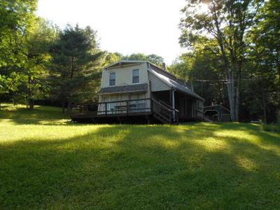Shinglehouse Single Family Home For Sale: 435 Dutton Hollow Road