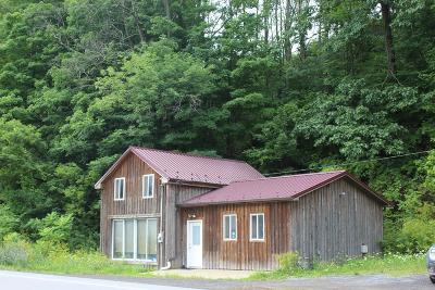 Wellsboro Commercial For Sale: 9886 Route 6