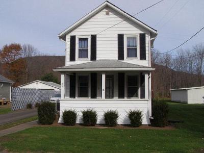 Wellsboro Single Family Home For Sale: 84 Asaph Run Road
