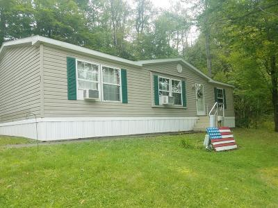 Potter County Single Family Home For Sale: 40 Mountain Lane