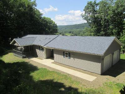 McKean County Single Family Home For Sale: 11 Chrisman Street