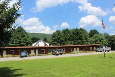 Wellsboro Commercial For Sale: 4643 Route 6